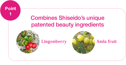 the-collagen-shiseido-smoothie-collagen-dang-bot-1